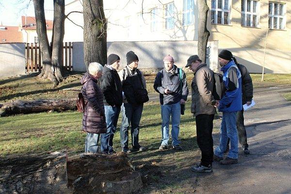 Uporaženého stromu, ve kterém zimovali netopýři, se vpátek odpoledne sešli odborníci zčeské inspekce životního prostředí.