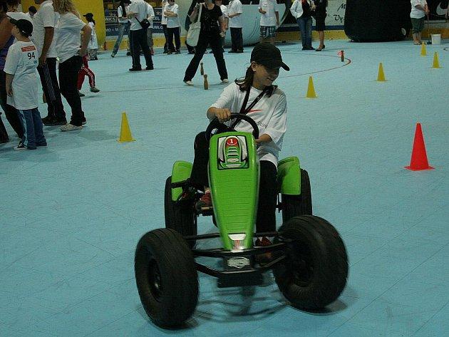 Handicapovaní sportovci se na zimním stadioně museli vypořádat s různými disciplínami.
