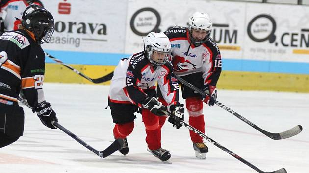 Hokejový turnaj na znojemském zimním stadionu.