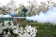 Pokud přijdou mrazy, budou ovocnáři ze Stošíkovic na Louce letos poprvé zkoušet stroj na výrobu mlhy. Má pomoci ochránit stromy před vlivem mrazu.
