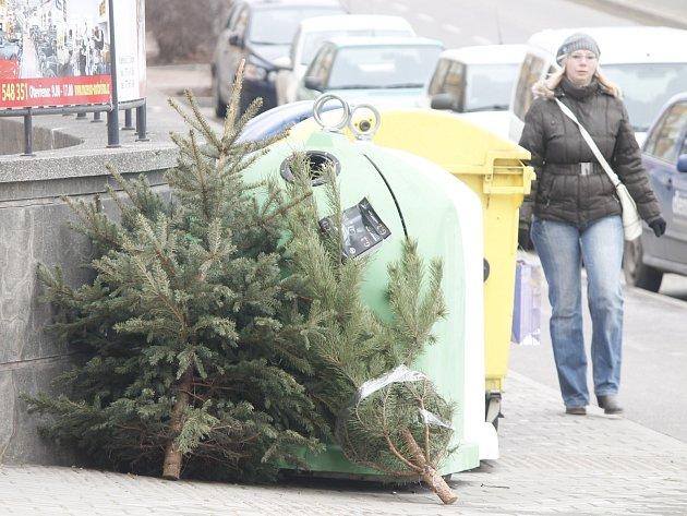Lidé již vyhazují nepotřebné vánoční stromky. Od míst s kontejnery je odváží specializovaná firma. Ve Znojmě také odstrojují a pomalu likvidují vánoční strom, který o svátcích zdobil Horní náměstí.
