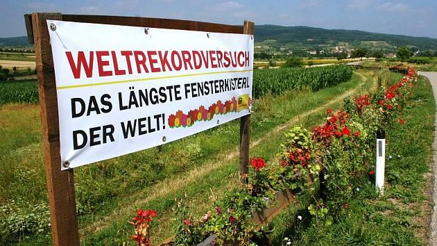 Obyvatelé rakouského příhraničního Retzbachu se poslední červencový den pokusí o zápis do světové Guinessovy knihy rekordů svým 1,2 kilometru dlouhým květinovým truhlíkem spojujícím dvě části obce.