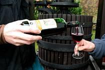 Svatomartinské víno - ilustrační fotografie.