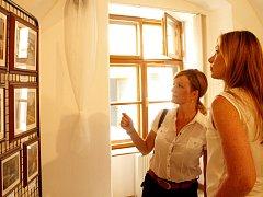 Patnáctka znojemských výtvarných umělců sdružená v uskupení s názvem Meandr vystavuje  své práce na městském úřadě ve Znojmě.