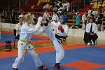 Znojemská sportovní hala přivítala v sobotu další mezinárodní turnaj v bojovém umění Taekwon-Do I.T.F. nazvaný Znojmo open.