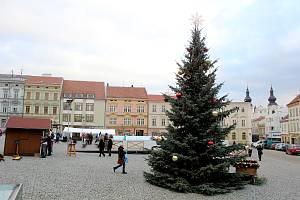 Znojmo má také letos dva vánoční stromy na svých náměstích. Na Horním náměstí chybí ale ledová plocha pro bruslení. Stánky vystřídají Voňavá okénka místních podniků.