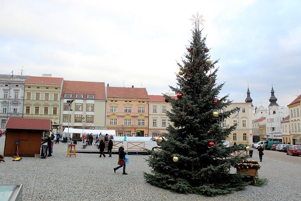 Vánoční strom ve Znojmě.