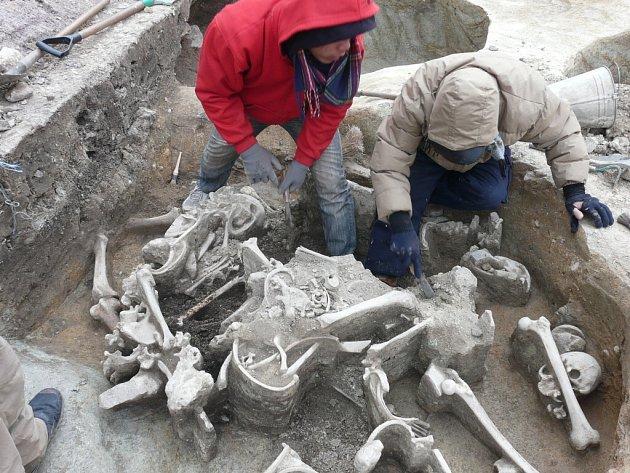 Archeologové poodkryli ponurou minulost znojemského Horního náměstí