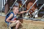 Farma Klíč otevřela své dveře. V horkém sobotním dni se na hospodářství, malý farmářský trh a hry  pro děti přišlo podívat přes čtyři tisíce lidí