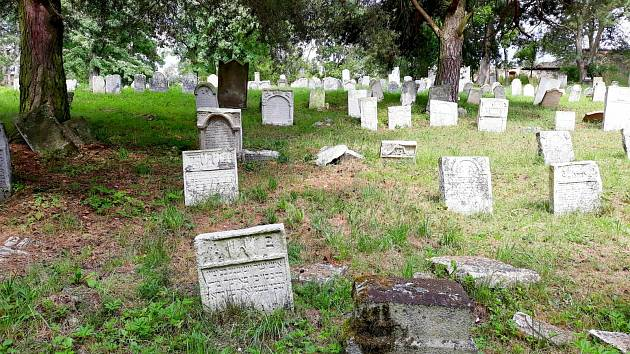 Procházka židovským hřbitovem v Šafově.
