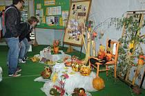 Zemědělská škola ožila česko-rakouskou výstavou.
