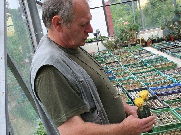 Jaromír Stehlík ve svém skleníku