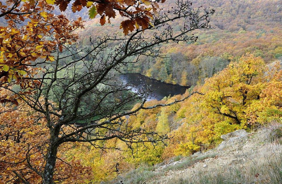 Národní park Podyjí, pohled na řeku Dyji z vyhlídky od vinice Šobes.