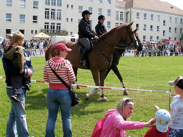 Policejní koně nesměli na Ajaxově dni dětí chybět...
