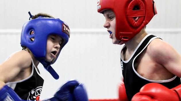 Ve Znojmě poměří své síly malí i velcí boxeři
