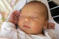 Mamince Radce Zemancové z Nového Boru se 20. listopadu ve 20:38 hodin narodila dcera Nelly Zemancová. Měřila 49 cm a vážila 3,39 kg.