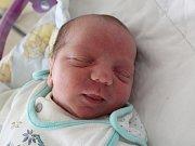 Rodičům Ladě Svobodové a Martinu Donovi ze Cvikova se v pondělí 16. října v 0:01 hodin narodil syn Eliáš Dono. Měřil 48 cm a vážil 3,12 kg.