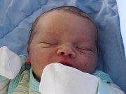 Rodičům Nině Kratochvílové a Michalu Pajkrtovi z Nového Boru se v neděli 7. května ve 21:43 hodin narodil syn Michal Pajkrt. Měřil 51 cm a vážil 3,78 kg.