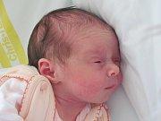 Rodičům Kláře Rusové a Filipu Lojínovi ze Sosnové se ve čtvrtek 24. listopadu v 9:28 hodin narodila dcera Viktorie Lojínová. Měřila 50 cm a vážila 3,02 kg.