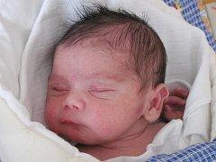 Mamince Jitce Demeterové ze Šluknova se 10. února ve 2:42 hod. narodil syn Dominik Karala. Měřil 49 cm a vážil 3,57 kg. Na sourozence se doma těší bráška Mireček.