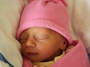Rodičům Aleně a Lukášovi Horčičkovým ze Stráže pod Ralskem se ve středu 22. března v 8:14 hodin narodila dcera Sára Horčičková. Vážila 2,27 kg.