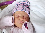 Rodičům Nikole Píchové a Petru Fenclovi z České Lípy se ve středu 28. listopadu ve 14:18 hodin narodila dcera Sofia Fenclová. Měřila 52 cm a vážila 3,86 kg.