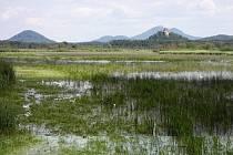 Novozámecký rybník v Zahrádkách.