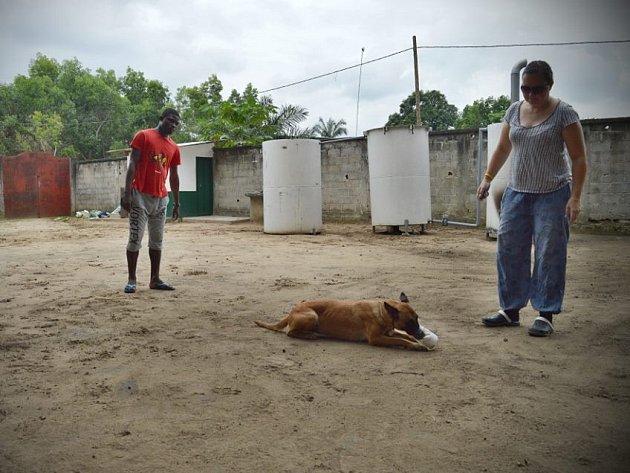 Novoborská kynoložka Hana Böhme v Africe cvičí štěňata fenky Camy, která v Kongu zahynula loni v létě.