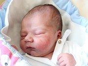 Rodičům Lence Riegerové a Patriku Bittmanovi z České Lípy se v úterý 20. března v 1:10 hodin narodil syn Patrik Bittman. Měřil 49 cm a vážil 3,33 kg.