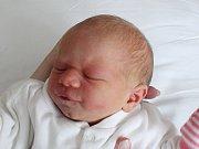Rodičům Lence a Jakubovi Košťanovým ze Cvikova se v úterý 11. prosince v 18:41 hodin narodila dcera Gabriela Košťanová. Měřila 49 cm a vážila 3 kg.