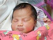 Rodičům Lence Horňákové a Adamu Svobodovi z České Lípy se ve středu 10. ledna ve 13:34 hodin narodila dcera Patricie Horňáková. Měřila 52 cm a vážila 4,02 kg.