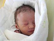 Rodičům Danuši a Petrovi Hackelovým z České Lípy se v neděli 29. října v 6 hodin narodil syn Adam Hackel. Měřil 49 cm a vážil 2,97 kg.