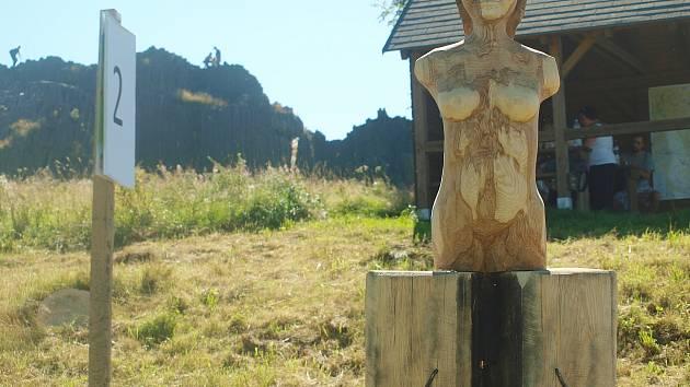 Dřevěná díla se dala spatřit v sobotu na Panské skále v Kamenickém Šenově.