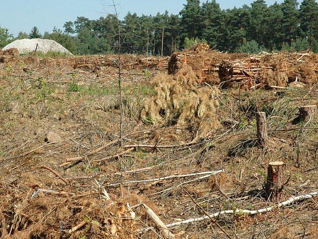 Liberecký kraj podal trestní oznámení kvůli zničení pozemků u letiště v Hradčanech.