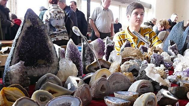 Nespočet minerálů byl k vidění na jubilejním 30. ročníku Minearologické burzy v České Lípě. Návštěvníci mohli obdivovat smaragdy, acháty nebo zkamenělý kmen přesličky.
