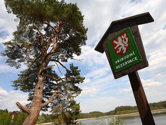 Rozlohou největší je nový lesnický park Bezděz, třetí v republice. Na ploše téměř 18 tisíc hektarů skloubí citliý přístup lesníků a rekreační a turistické aktivity.