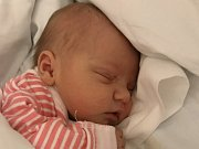 Mamince Kateřině Janecké Práškové a Milanu Janeckému z Nového Boru se v pondělí 18. prosince ve 13:54 hodin narodila dcera Amálie Janecká. Měřila 50 cm a vážila 3,53 kg.