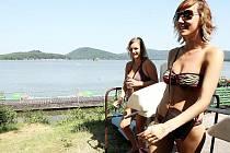 Na kvalitě vody v Máchově jezeře každoročně závisí, zda do města, které prakticky žije z příjmů z hlavní letní sezóny, přijedou turisté v hojném počtu.