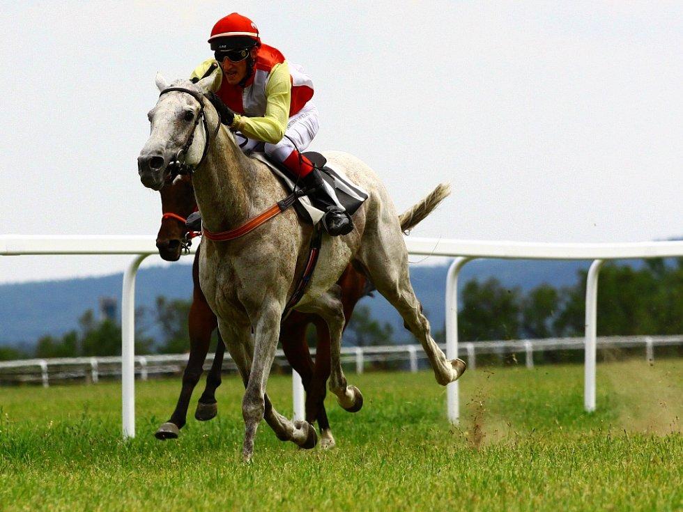 Dostihovou sobotu si užijí příznivci ušlechtilých koní v Mimoni.