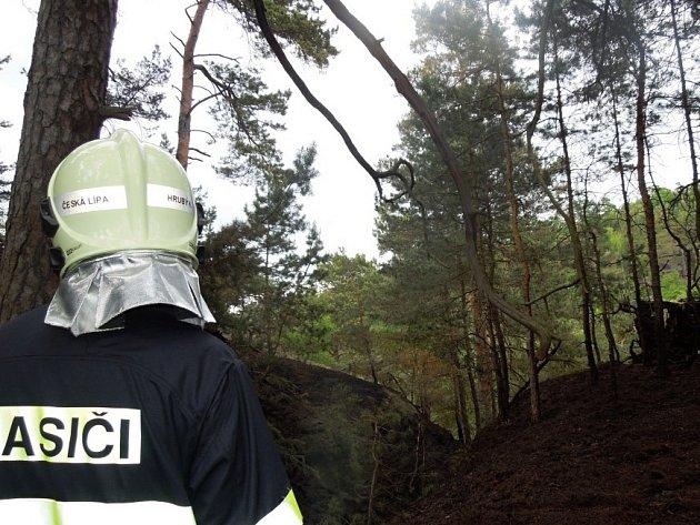 O víkendu zaměstnal hasiče na Českolipsku lesní požár v oblasti Tuhaně (části obce Domašice).