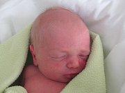 Rodičům Renatě a Václavu Rychtaříkovým ze Cvikova se v úterý 17. ledna v 19:46 hodin narodil syn Adam Rychtařík. Měřil 47 cm a vážil 2,56 kg.