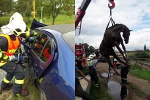 Z vážné dopravní nehody u Jestřebí hasiči spěchali k záchraně koně.