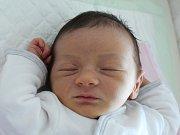 Rodičům Ivaně Kunešové a Michalu Garajčekovi z České Lípy se v pátek 11. srpna ve 13:03 hodin narodila dcera Sofie Garajčeková. Měřila 50 cm a vážila 3,55 kg.