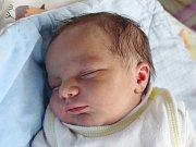 Mamince Vladimíře Giňové z Varnsdorfu se ve středu 10. ledna ve 14:04 hodin narodil syn Alan Giňa. Měřil 47 cm a vážil 3,24 kg.