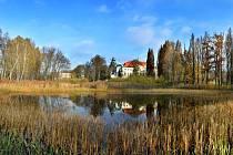 Zarostlé mokřadní pozemky nedaleko centra Jablonné v Podještědí přeměňuje Čmelák na klidovou zónu pro místní obyvatele.