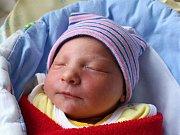 Rodičům Petře a Ladislavovi Zelenkovým z České Lípy se ve středu 14. února ve 12:50 hodin narodila dcera Tereza Zelenková. Měřila 48 cm a vážila 2,76 kg.