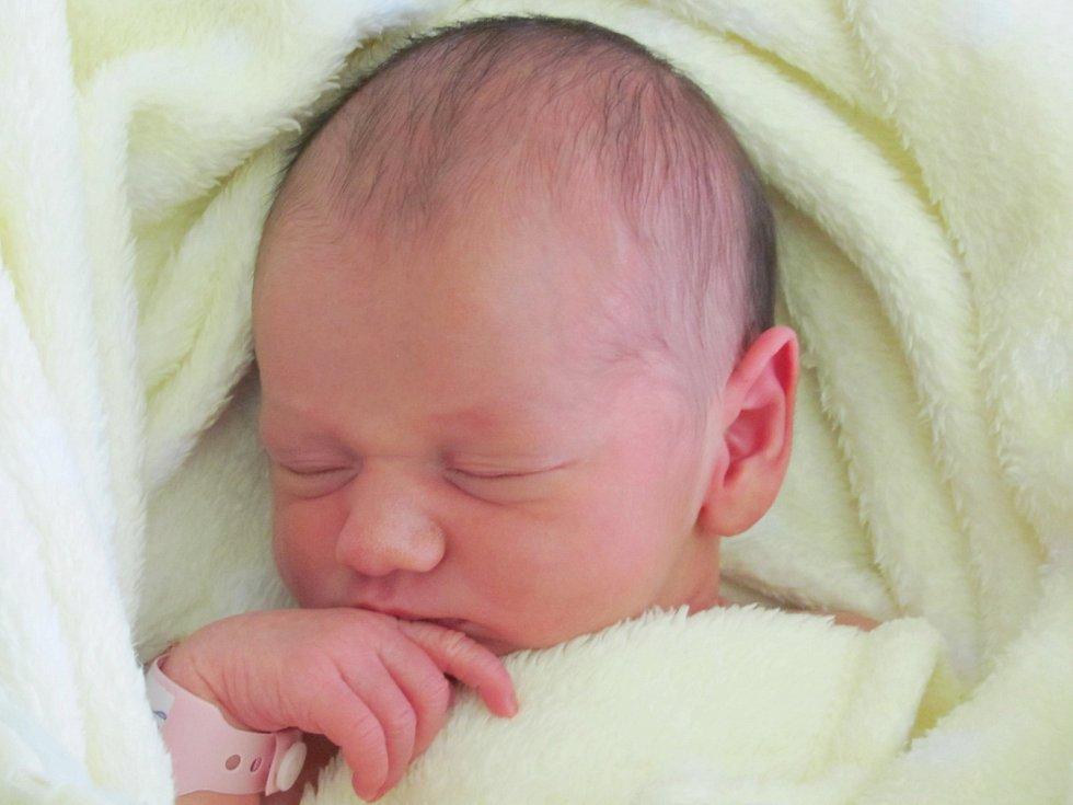 Rodičům Renatě Houfkové a Michalu Penzovi z České Lípy se v sobotu 28. listopadu ve 21:17 hodin narodila dcera Ella Penzová. Měřila 47 cm a vážila 2,95 kg.
