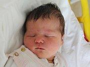 Rodičům Kateřině Vaďurové a Tomáši Holubovi z České Lípy se v úterý 23. ledna ve 22:49 hodin narodila dcera Ema Holubová. Měřila 51 cm a vážila 3,68 kg.