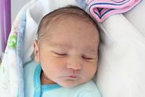 Rodičům Katrin Viltresové a Josefu Fiuráškovi ze Starých Křečan se v pondělí 1. července v 9:45 hodin narodil syn Samuel Viltres. Vážil 2,72 kg.