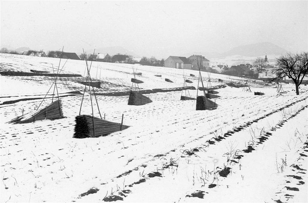 Chmelnice v zimě na začátku 20. století.